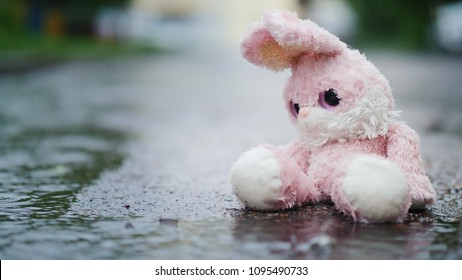A cute toy rabbit is sitting in a puddle in the rain