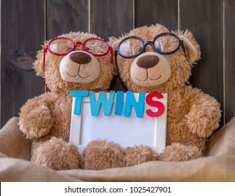 Cute twins brown bears,  one wear red glasses and other one wears black glasses, both hold white frame written word TWINS with wooden letters. Dark color wood background. Twins day, birthday, cards.