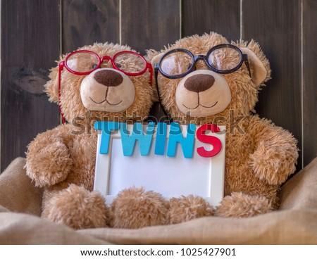 Cute Twins Brown Bears One Wear Stock Photo Edit Now 1025427901