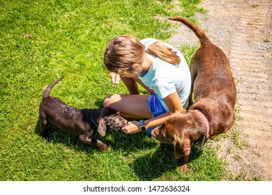 Cute white girl with dog mother and puppies playing