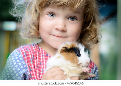 Cute white toddler girl in a rustic style dress holding  red guinea pig on her hands