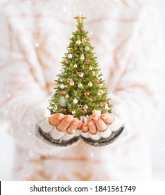 Cute woman holds decorated christmas tree in her hands. Merry Christmas and a Happy new year concept