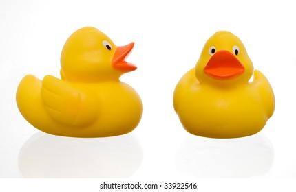 cute yellow rubber duck