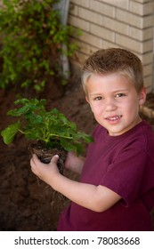 A cute young boy, in front of a home, holds a green plant with roots, ready to be planted in the garden