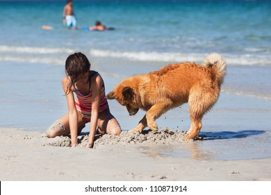 cute young girl and her Elo puppy dig together a hole in the sand of the beach
