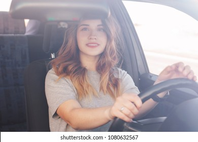 Cute young woman sits at cat at wheel, looks attentively at mirror, has good vision, traveles alone by vehicle. Delighted beautiful female driver tries her new automobile or teaches to drive