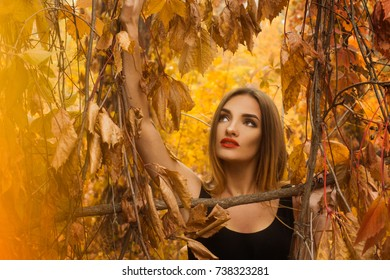 cutie young girl with make up posing in golden autumn forest