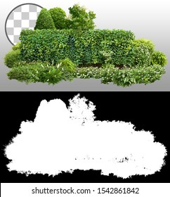 Cutout green hedge. Garden design isolated on transparent background via an alpha channel. Flowering shrub and green plants for landscaping. Flower bed and boxwood hedge. High quality clipping mask.