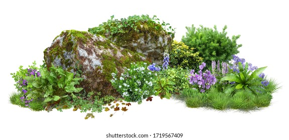 Cutout rock surrounded by flowers. Garden design isolated on white background. Flowering shrub and green plants for landscaping. Decorative shrub and flower bed. High quality clipping path. - Shutterstock ID 1719567409
