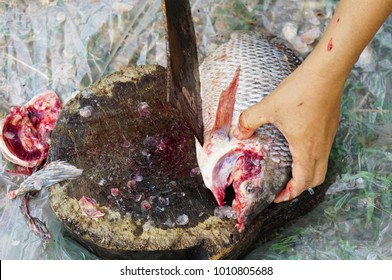 Cutting flesh Tilapia fish for cooking in Thailand