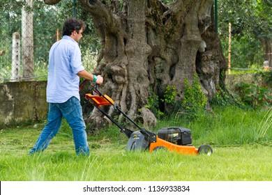 cutting the grass in a garden