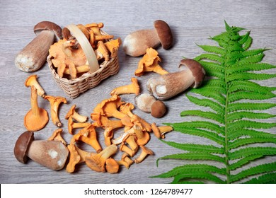 cutting mushrooms on a wooden background in a basket and green leaves