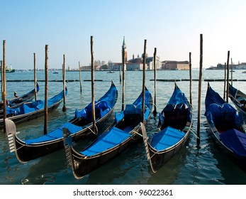 cutting old branches in vineyard in spring by the old man