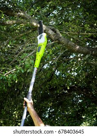 Cutting tree branches with a pole chain saw
