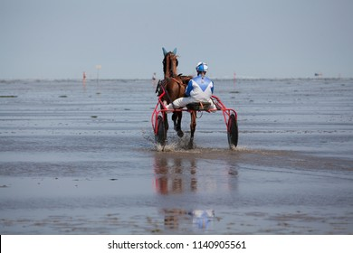 """Cuxhaven, Germany - July 22, 2018: female equestrian with white and blue dress nd blonde braid on a red sulky behind a brown horse in the mud flat at """"Duhner Wattrennen"""", backside view"""