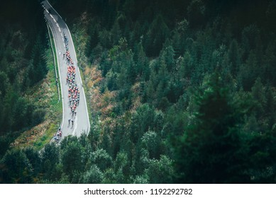 Cycling peloton on the road in mountains near by green forest