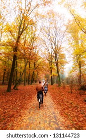 Cycling trough the woods in national park 'De hoge veluwe' in the Netherlands in autumn