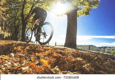 Cyclist in autumn sunny day