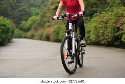 cyclist cycling mountain bike on foggy forest trail