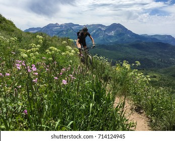 A cyclist descends a single track trail in front of a high alpine mountain peak.