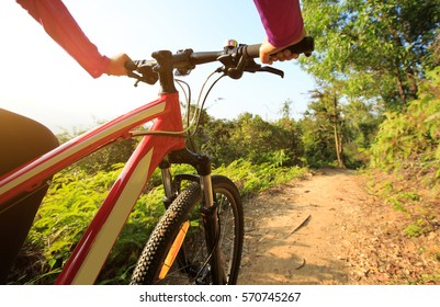 cyclist hands riding mountain bike on forest trail