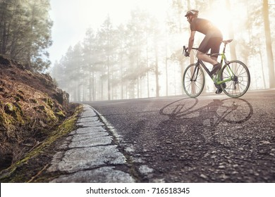 Cyclist on road in a foggy forest