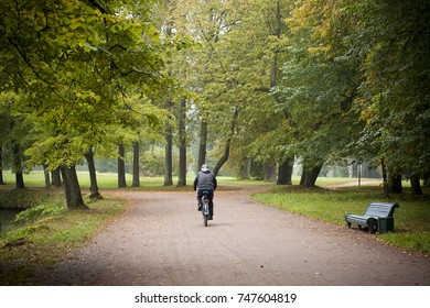 Cyclist rides in empty autumn park on clean path and bench on the right. Forest trees with yellow leaves and morning nature atmosphere