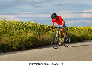 A cyclist rides on a road bike along fields of sunflowers. Photo.
