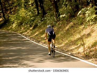 the cyclist rides up the road in a mountain through a forest