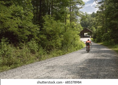 cyclist riding on trail in woods