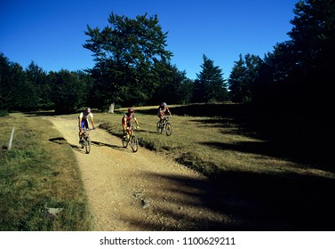 cyclists in off-road racing