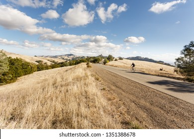 Cyclists ride up long hill on bicycles in Mt Diablo Park on sunny day