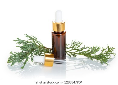 Cypress essential oil isolated on white background. Cypress oil on bottle  with dropper
