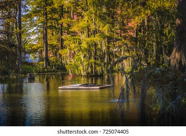 Cypress Lake at Lafayette
