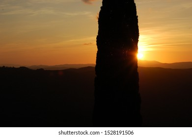 Cypress silouhette in foreground and panoramic view over the Tuscany countryside from the town of Montalcino at the sunset with orange yellow and warm light
