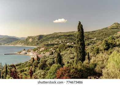 Cypress tree and bay in Euboea in Greece