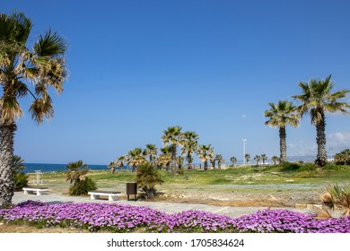 Cyprus island - Paphos city - Lighthouse beach walking are