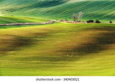 Czech countryside, south Moravia.