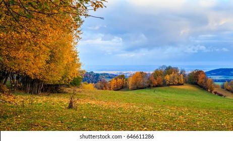 Czech landscape, Rychleby mountains