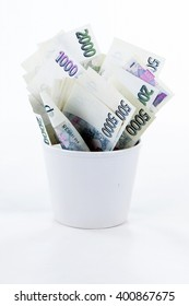 Czech paper money in flowerpot on white background