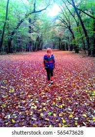 Czech psychedelic girl in colors of autumn in deep Czech forest. - Shutterstock ID 565473628