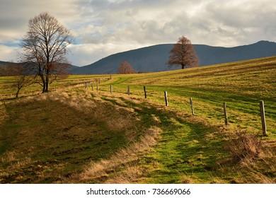 Czech republic nature near city Liberec in a stunning autumn weather.