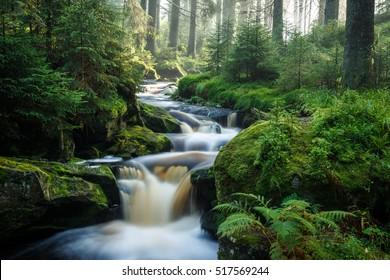 Czech Republic - September 20, 2016 -  A view of a morning mountain stream in National Park Sumava