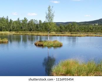 Czech Republic, Sumava mountains, glacial lake  named Chalupska slat