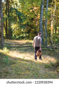 Czech republic, Travnik, October 14, 2018: young man in deciduous forest is hunting for a mushrooms holding whicker basket creel, mushroom picking concept