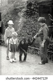 THE CZECHOSLOVAK SOCIALIST REPUBLIC - CIRCA 1960s: Retro photo shows chimpanzee and ZOO keeper with children. Black & white vintage photography