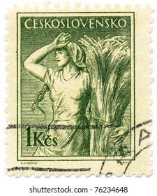 CZECHOSLOVAKIA - CIRCA 1954: A stamp printed in Czechoslovakia, shows farmer's wife, circa 1954
