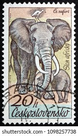 CZECHOSLOVAKIA - CIRCA 1976: a stamp printed in Czechoslovakia shows African Elephant, Loxodonta Africana, Animal, circa 1976