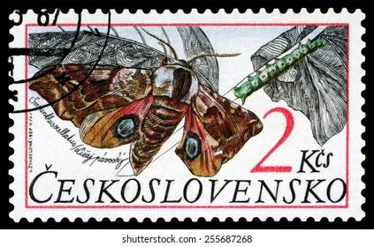 CZECHOSLOVAKIA  - CIRCA 1987: A stamp printed in Czechoslovarla,  shows butterfly  Smerinthus ocellatus, series, circa 1987.