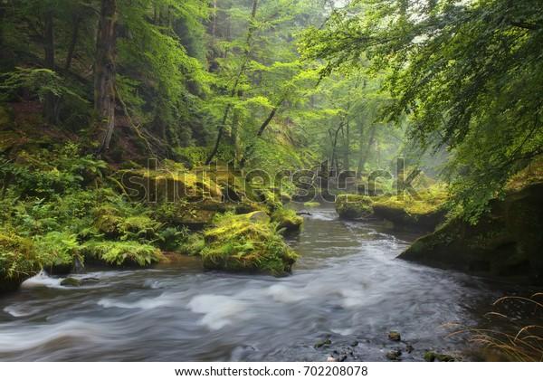 The Czech-Saxon Switzerland. Mystical River Kamenitsa. Hrensko.